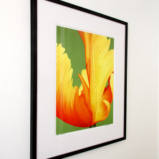 Yellow June limited edition framed left view