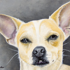 Bubba - original pet portrait by Erica Eriksdotter